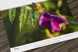 Der gedruckte Kalender
