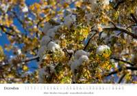 Natur-Kalender 2015