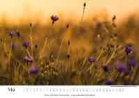 Natur-Kalender 2016