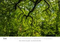 Naturkalender 2018