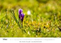 Naturkalender 2019